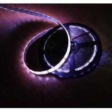 Rullo a Led - RULLO LED 5050 BIANCO PURO
